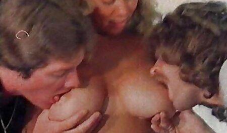 गधा स्लिम फूहड़ सेक्सी फिल्म फुल एचडी वीडियो में टक्कर लगी है