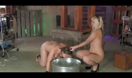युवा सेक्सी वीडियो फुल मूवी वीडियो बिल्ली में परिपक्व